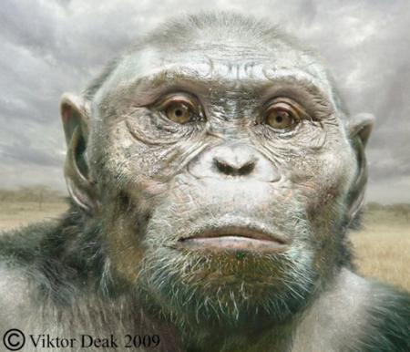 Viktor Deak's Lucy